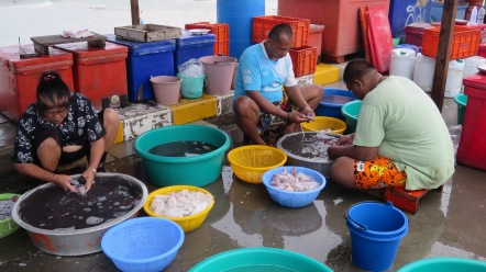 Cleaning fish on the Hua Hin pier.